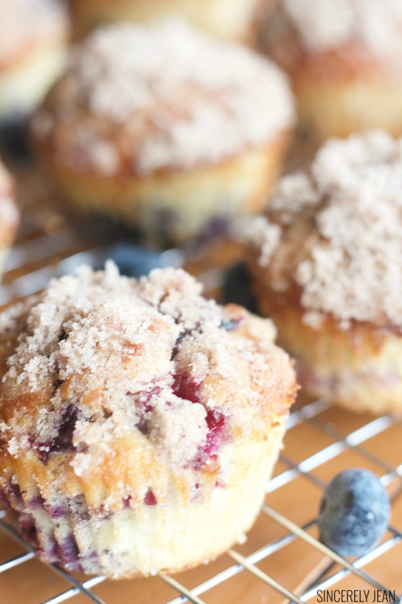 The Best Blueberry Streusel Muffins