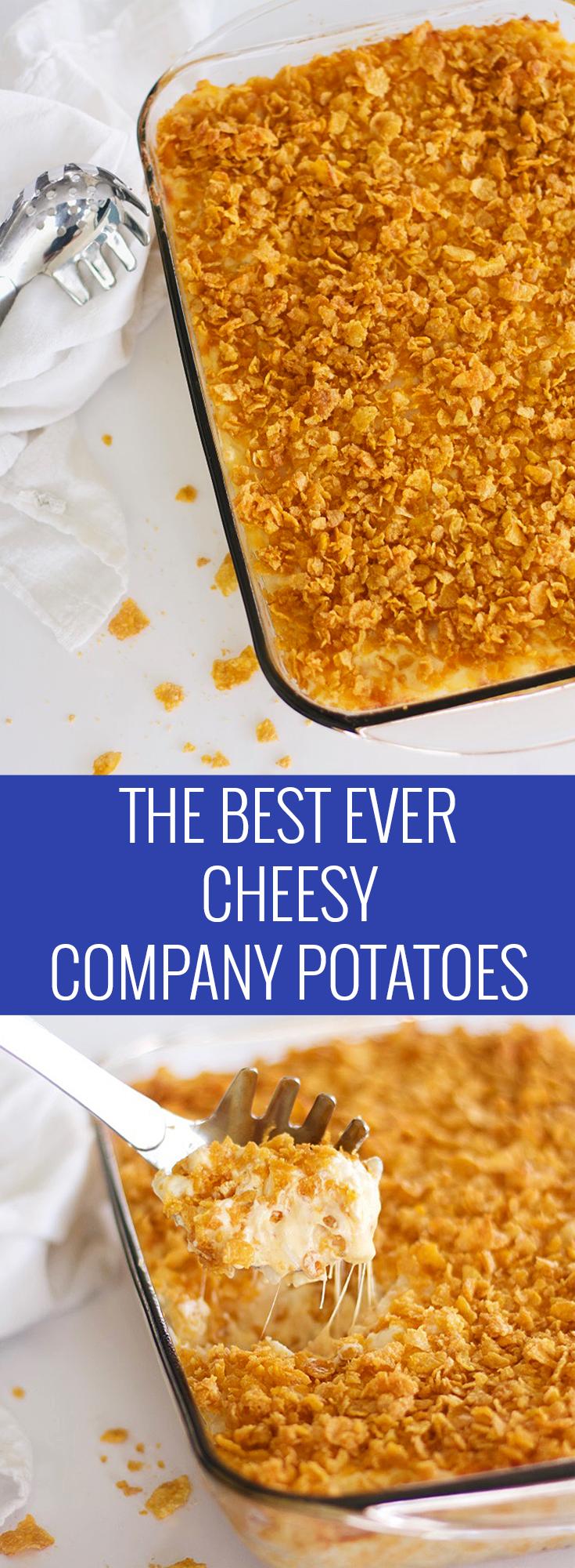 The Best Cheesy Company Potatoes